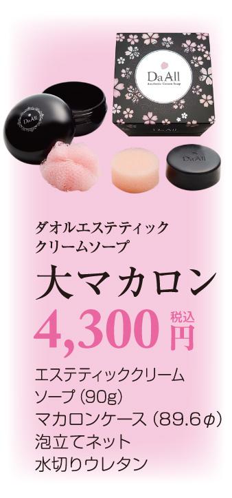 大マカロン 6,800円